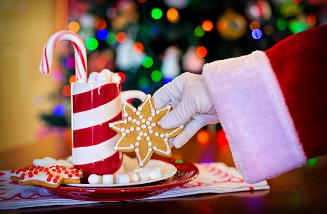 Santa's arm reaching for a cookie